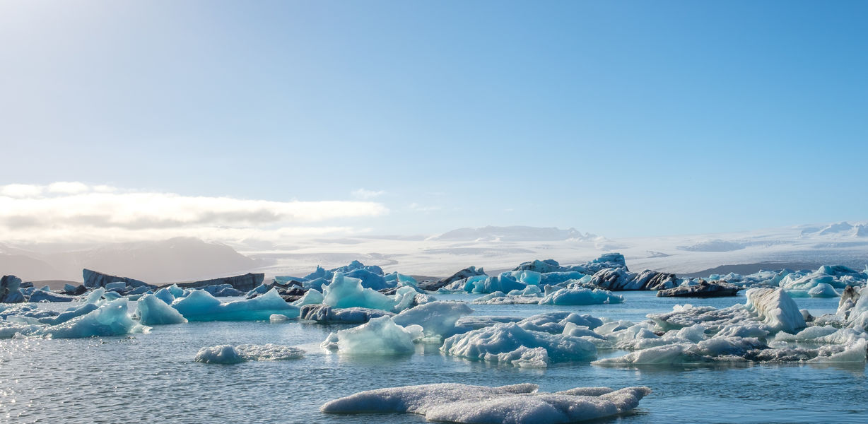 Российские школьники обнаружили новый остров в Арктике