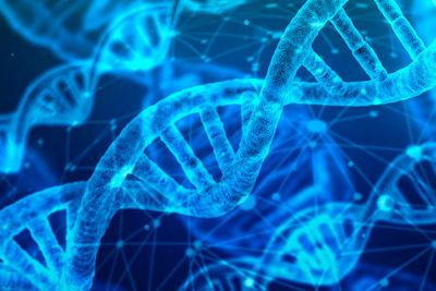 Составление и использование педагогических тестов при обучении биологии