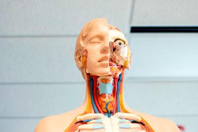 Инновационные технологии обучения биологии как основа реализации ФГОС