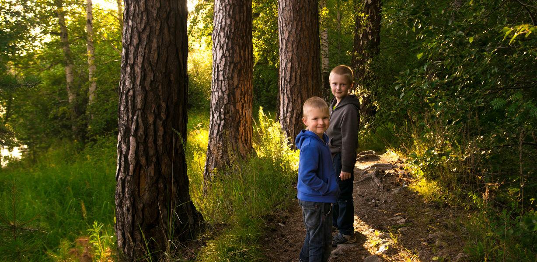 В Приморье открыли первое детское лесничество