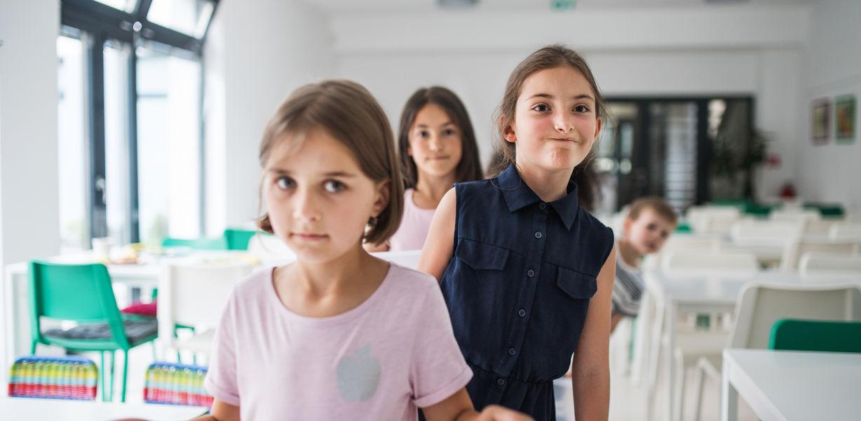 Минпросвещения разработало постановление о выделении субсидий на питание младшеклассников